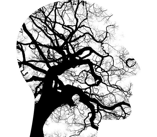 Biopsychologie v praxi