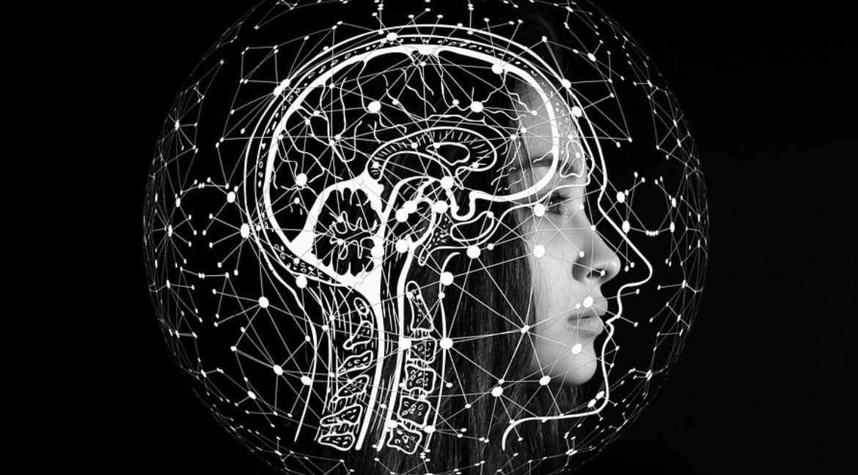 mozek terapie